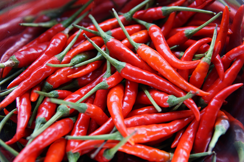 pepper-layout-1.jpg